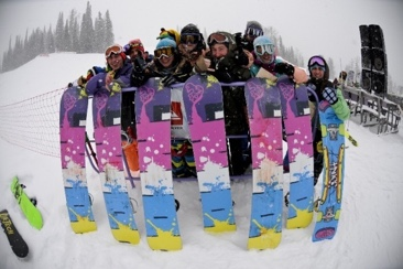 Joint Snowboards 2008
